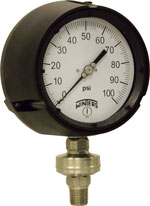 PTR Tamper Resistant Process Pressure Gauge